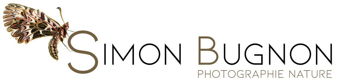 Simon Bugnon